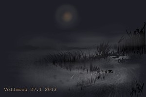 Vollmond 27.1.2013_600