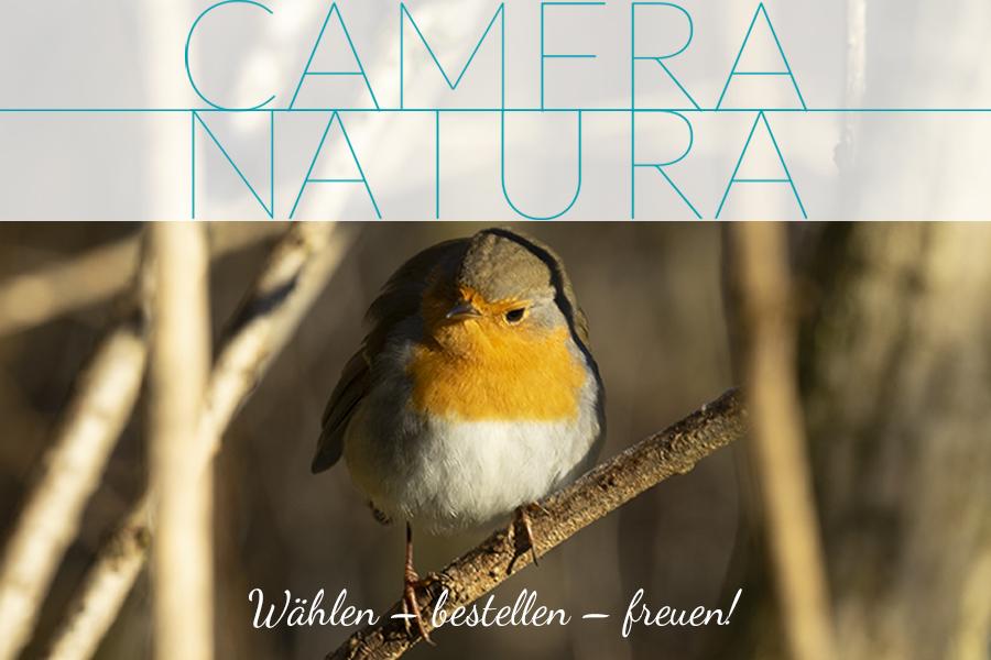 Räume ausstatten, Fotos online bestellen, Naturfotografie