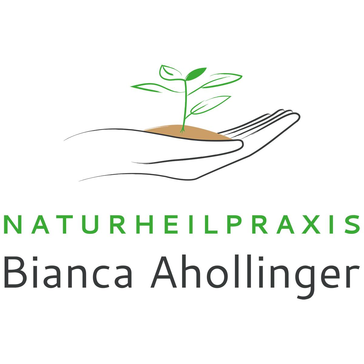 Logo erstellen:  Bianca Ahollinger, Naturheilpraxis, Heilpraktikerin, Haarbach