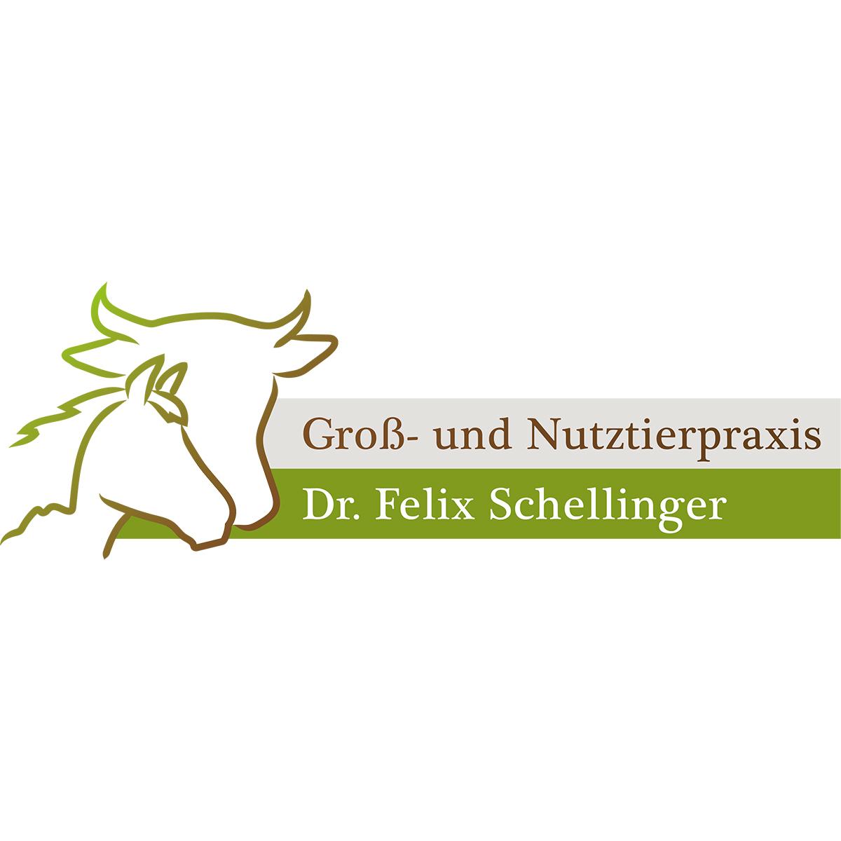 Logo erstellen: Felix Schellinger Tierarzt Murnau