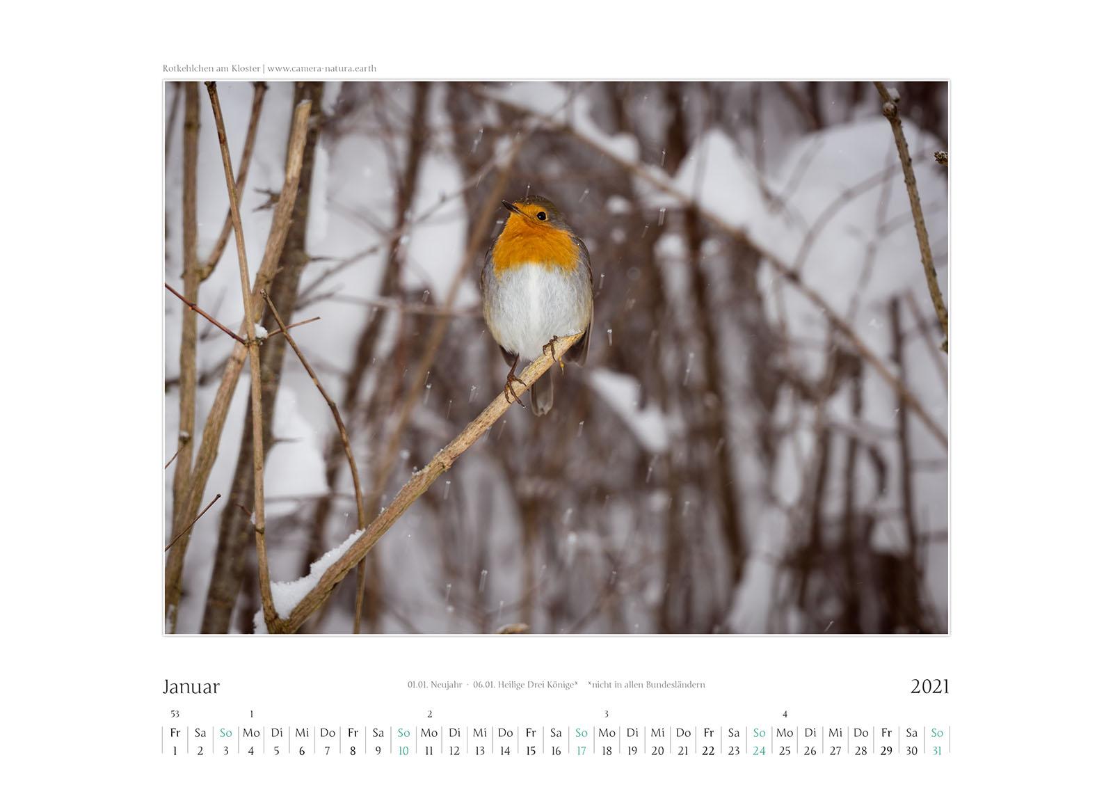 Bildkalender Schlehdorf 2021