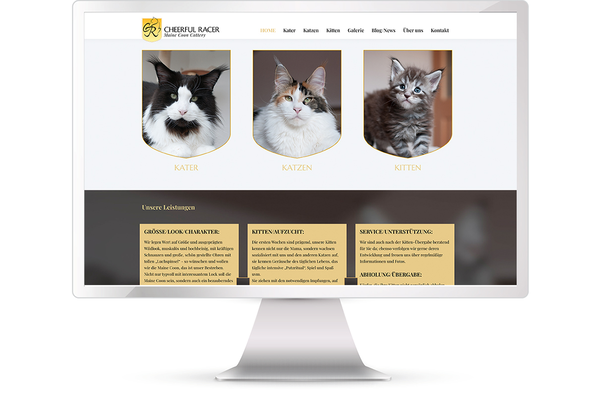 Website Maine Coon Cattery